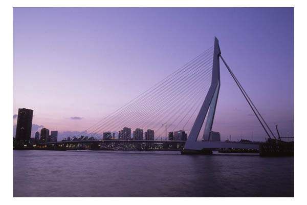 Erasmusbrug (Erasmus Bridge), Rotterdam, The Netherlands, at dawn